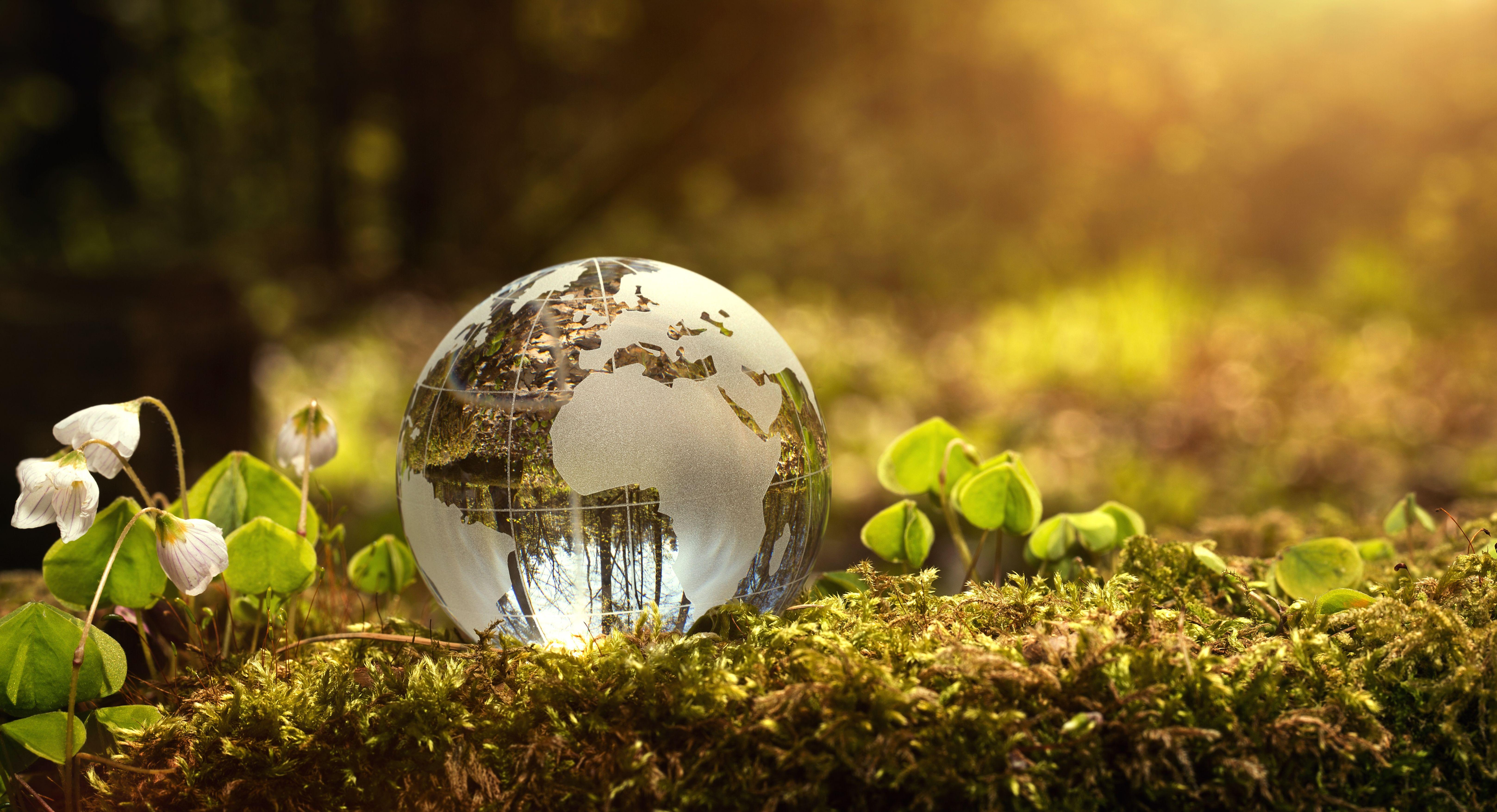 Algumas as práticas de sustentabilidade adotadas: